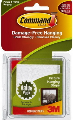 Picture hanging command strips