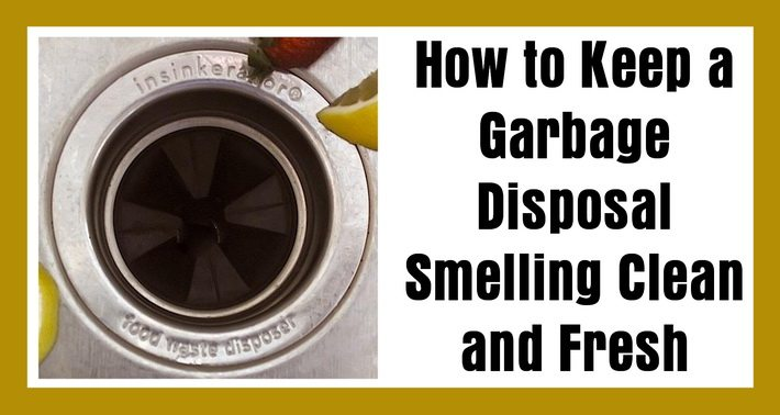 How to Keep a Garbage Disposal Smelling Clean and Fresh